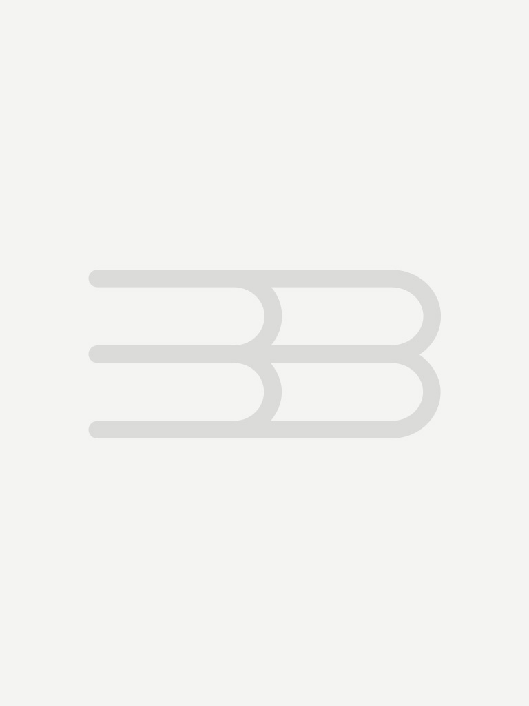 Boken om teskedsgumman och andra sagor : en samlingsvolym